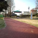 公園にパンダ