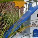 Houten Nestkastje voor Pindakaas pot, Nestkastje, thema, Grieks stijl  Zon, Vogelhuisje bouwen, vogelhuisje pindakaas pot, huisje zon_4