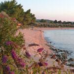 Strand vor CP Kovacine