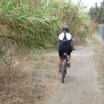 zufällig entdeckt; super Bikeweg am Coghinas-Fluss