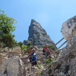 Blick auf die Punta Goloritze