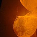 浮遊する魂(La alma flotante) 2012
