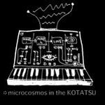 *microcosmos in the KOTATSU