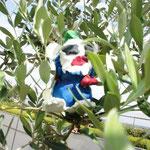 あ!木の上にこびとがいるよ。