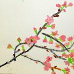 桜の花や幹の細かい部分まで丁寧に描いています!