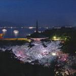 2018春ふぉとコンテスト 準特選「宮島の夜景」 田部毅