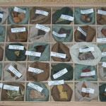 Gewürzschaukasten mit Gewürzen die es bei uns im 13. Jhdt schon gegeben hat