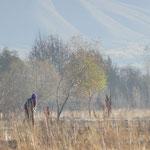 Les travaux des champs, dans la vallée. (oh oh..)