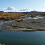 Dernieres traces de foret avant des paysages de steppes