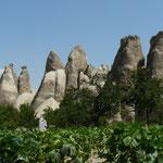 Des turcs vivent encore au milieu des sites touristiques, continuant a travailler la terre