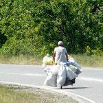 Un drole de bonhomme quı ramasse les bouteilles en plastiques a travers la Georgie (il doit en avoir des centaines)