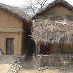 Maisons typiques du Terai : les murs sont en terre et le toit en paille