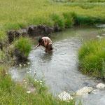 Rafraichissement a la rivière avant le pic-nic