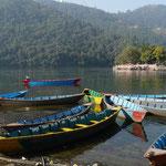 Quelques pirogues permettent aux devots de se rendre au temple situé sur une petite ile du lac Phewal, a Pokhara