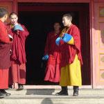 des moines qui se curent le nez, ...