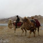 Kyrghyzs en chameau qui viennent nous rendre viste au campement au bord du lac