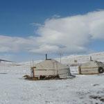 Reveil au camp de yourtes ou nous avons passe la nuit avec les chauffeurs. C'est un camp d'ouvriers de la DDE qui construisent une route goudronnee... La Mongolie sera bientot asphaltee, un autre monde !!