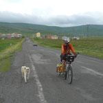 Nico a trouvé un nouveau copain. On nous avait prévenu de nous méfier des chiens turcs, réputés assez hargneux: c'est le seul quı nous ait approché..