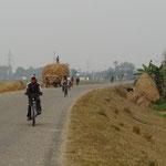 Toujours beaucoup de vélos sur les routes!