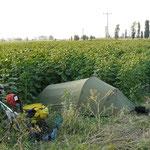 Campement dans les champs. Plus dedans ca risque d'énerver le fermier