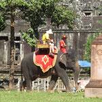Touristen und Elefanten