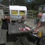 Dolly - the caravan