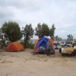 Camping at Shark Bay