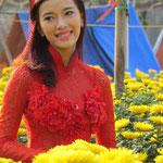 Miss Chrysanthemum