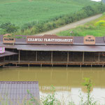Floating market - schwer kitschig