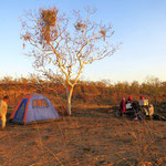 Bushcamp