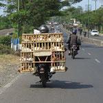 Hühnerlieferung - chicken delivery
