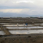 Meersalzgewinnung  -  panning sea salt
