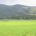 auf dem Weh nach Luang Nam Tha - on the road to Luang Nam Tha