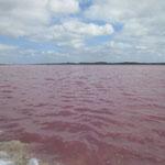 Roter See,  BASF ist gleich nebenan und nutzt den natürlichen Farbstoff der Algen für Lebensmittelfarbe
