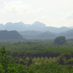 Khao Sok National Parc