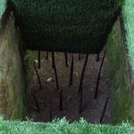Nachbau einer Bambusspießfalle / replica of a bamboo spear trap