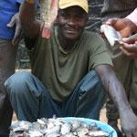 Erste Ernte der neuerstellten Fischteiche