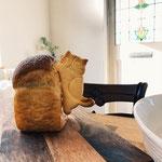 じじだだ パンの写真