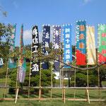 徳島市中央公園には今年で公演10年となる小屋掛の幟が上っていました。                   ・秋晴や小屋掛幟高々と(和良)
