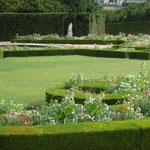 ヴェルサイユ宮殿の庭園にはコスモスが咲いていました。                               ・宮殿の庭にコスモス群れ咲きて(和良)