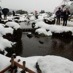雪の兼六園でしたが辰巳用水の水は滾々と流れていました。       ・雪溶かし辰巳用水滾々と(和良)