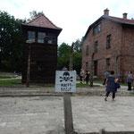 アウシュビッツ強制収容所はクラクフの郊外にありました。       ・地獄絵の日々偲びゐる溽暑かな(和良)