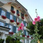 インターラーケンではホテルに綺麗な花が咲き競っていました。                            ・立葵色鮮やかにスイスかな(和良)