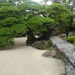 石組が見事な徳島城表御殿の庭園から虫の音が聞こえてきました。 ・ちちろ鳴く表御殿の庭園に(和良)