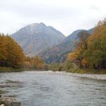 紅葉を見ながら歩いてきた木道を河童橋から振り返ると焼岳も見えました。                    ・紅葉狩とは木道をただ歩く(和良)