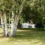 クレムリンの森の中には体を休めるベンチもありました。        ・すずかけの実のたわわなるクレムリン(和良)
