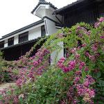 海野宿は重要伝統建物群保存地区、日本の道百選に指定されています。  ・萩茂る海野宿なる街道に(和良)
