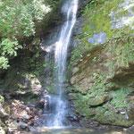 かずら橋を渡ったところに平家の落人が愛した枇杷の滝がありました。           ・枇杷ひいて都偲びし枇杷の滝(和良)