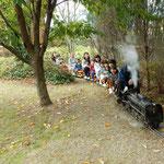 阿波市土成町で今年も子供や孫たちとミニエスエルに乗りました。    ・子らの声はずむ庭園木の実降る(和良)