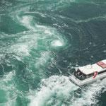 大鳴門橋から見た春の大潮です。観潮船には大勢の観光客が乗っていました。  ・そこあそこここと渦見の船の客(和良)